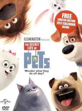 buy the secret life of pets hindi dvd online. Black Bedroom Furniture Sets. Home Design Ideas