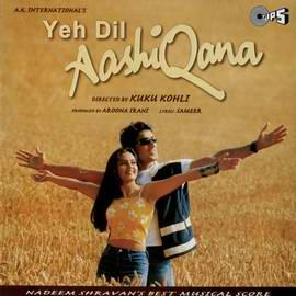 YEH DIL AASHIQANAA  movie