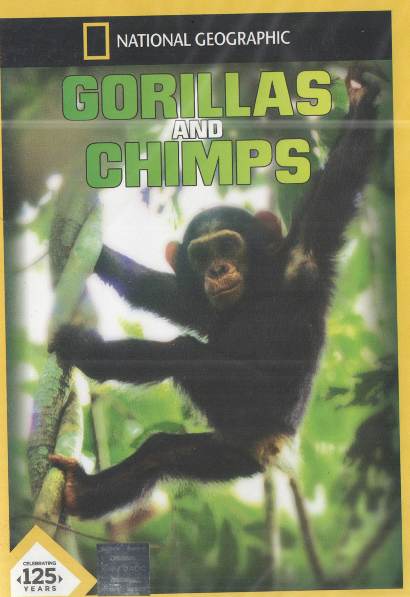 dian fossey devoted thirteen years in the study of gorillas Zoos and animal welfare (2007)  who studied wild gorillas in rwanda with the late dian fossey,  a study of gorillas in belfast zoo found that when.