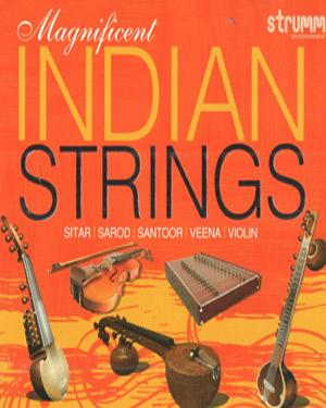 Magnificent Indian Strings  music