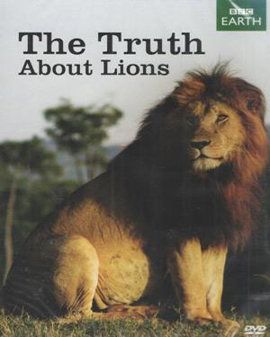 THE TRUTH ABOUT LIONS poster