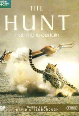 The Hunt - Nothing Is Certain poster